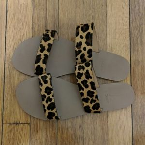 Cheetah print J. Crew sandels